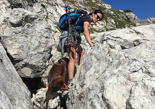 Klettern und Wandern mit Hund